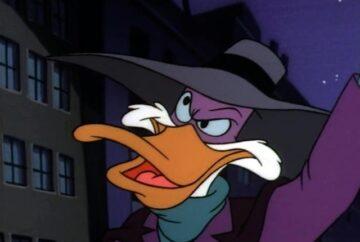 darwing duck